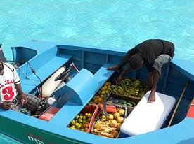 Isole Grenadine in catamarano