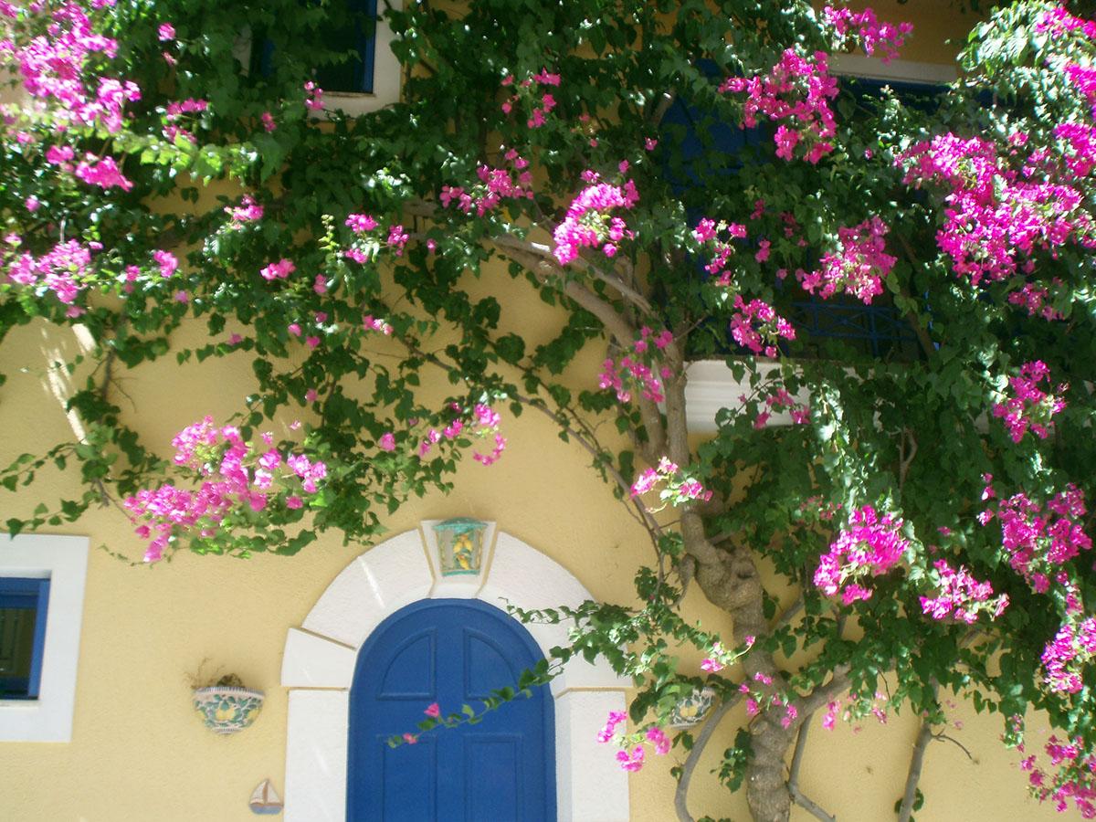 Vacanze in barca a vela, Assos, Cefalonia