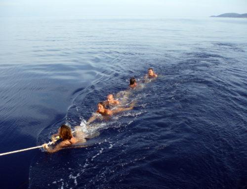 Last minute Luglio vacanze in barca a vela.